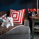 『犬と暮らす!海外の素敵なインテリア画像まとめ 3/3 【インテリアまとめ・画像 部屋 】』の画像