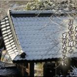 『あわ雪』の画像