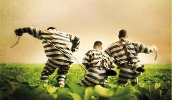 囚人のジレンマのジレンマが本当にジレンマ過ぎてワロタwwwwwwwww