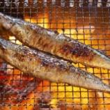 『【悲報】サンマ、1匹3500円・・!!もう終わりだよこの国の魚』の画像