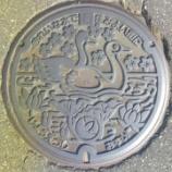 『新潟県上越市のマンホール2種類』の画像