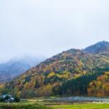 『晩秋Late autumn.』の画像