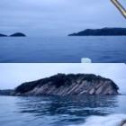 『4月16日 加太 清海丸 ドすけべtune.com』の画像