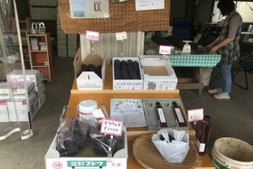 神宮寺の田中ぶどう園は6月19日(土)から直売所オープンするみたい!