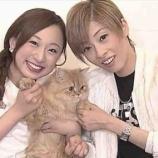 『明日海りおさんの『恋スルARENA~花組』横浜アリーナ公演にかける思い』の画像