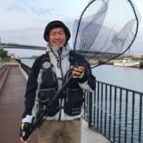 『【タモ・玉網】シマムラ的シーバス用ランデングネットの基本まとめ。』の画像