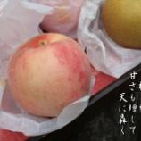 『桃と梨』の画像
