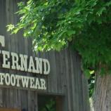 『[Today's SHOES♀]  Fernando footwear  women 5 models』の画像