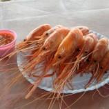 『2017年9月タイ旅行 4日目 パタヤ-コンケーン その5(パタヤビーチで蒸しエビを喰らう!)』の画像
