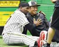 【画像】阪神鳥谷、ガルシアに抱きつかれて満面の笑み