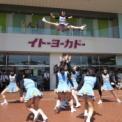 2014年 第11回大船まつり その54(イトーヨーカドー前/鎌倉女子大学チアリーダー部LOVERS)の11