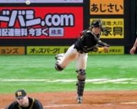 【朗報】阪神梅野さん、地味に大記録を達成していた