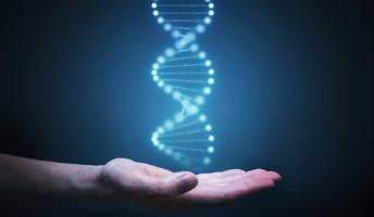 どんな育て方しても、結局遺伝子通りの能力、性格になると思うんだけど