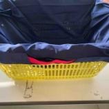 『《マーナのたったまま畳める「Shupatto」シュパットをレジカゴ用エコバッグに使っています》』の画像