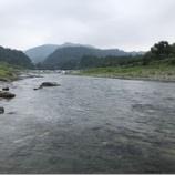 『小鮎と遊ぶ38 (2019/8/3 安曇川・長尾 初挑戦)』の画像