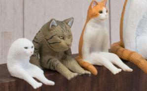 インパクトがある「座る変な猫」