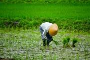 農業で使う水や土をよくしよう!~東京大学 水利環境工学研究室の紹介~
