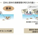 日本人「アカン、うなぎが不足して捕れへん・・・せや!禁漁先延ばしにしたろ!」