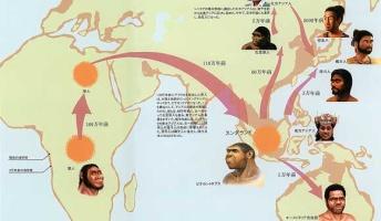そもそも日本人の起源ってどこなんだろう?