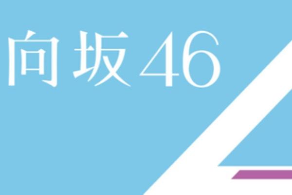 46 サイト まとめ 向坂 日