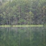 『池』の画像