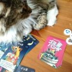 きょうは何して遊ぶ?~子供とアナログゲームする日記~
