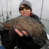 『11月19日 釣果 松島ロックフィッシュとハゼ釣り』の画像