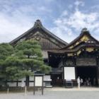 『【夢中図書館】いざ城ぶら「二条城」!徳川の栄枯盛衰を見つめた世界遺産の名城』の画像