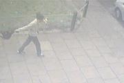 猫の尻尾を掴んでブン回す男、路上を往く モーグリ(´・ω・)カワイソス