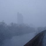『ぎょ、吹雪』の画像
