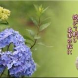 『啄木を偲ぶ』の画像