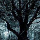 『【祟り神】お爺ちゃんの家に棲みつく黒い異物』の画像
