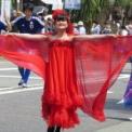 2014年横浜開港記念みなと祭国際仮装行列第62回ザよこはまパレード その63(キリンビール)の2