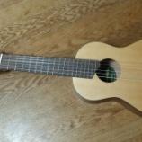 『【楽器】小さくて手軽でキュートなギタレレの紹介』の画像