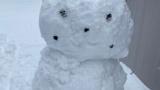 超絶リアルピカチュウ雪像作った(※画像あり)