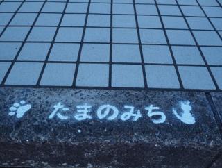 祝☆オープン!猫雑貨とコーヒー「厚底をはいたねこ」(諫早市多良見町)