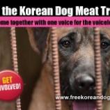 『まもなく韓国犬猫虐殺の日』の画像