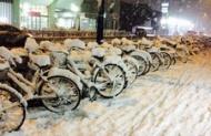 【画像あり】札幌の雪やばすぎわろたwwwwwwwwww