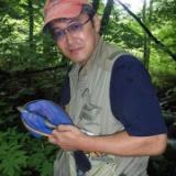 2008.7.15(火)野反湖と支流、温泉とグルメのサムネイル