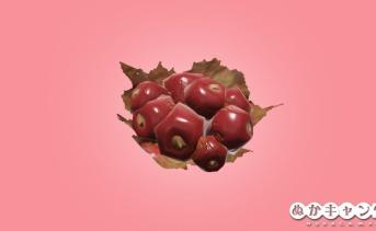 爆竹ベリー(Firecracker berry)
