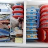 『4月の我が家の冷凍庫』の画像
