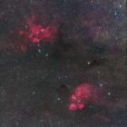 『彼岸花と猫の足跡星雲』の画像