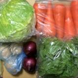 『野菜を買いだめ!』の画像