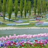 『いつか行きたい日本の名所 淡路島国営明石海峡公園』の画像