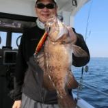 『3月27日 釣果 スーパーライトジギング 魚達が乱舞してました!(^^)!』の画像