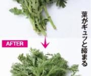 しなびた野菜を50℃の湯で洗うと鮮度が蘇る効果が発見される