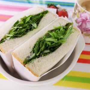 シンプルなのに絶品♪ベビーリーフサンドイッチ