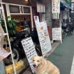 〜 季節外れの桜のように 〜Tsubasa Official Weblog