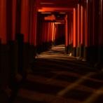 霊感が強すぎて三つの神社クビになった神職だけど質問ある?「呪いの樹と藁人形」他
