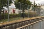 傘、置き忘れてますよ!~京阪電車の踏切ちょっと手前のところ~